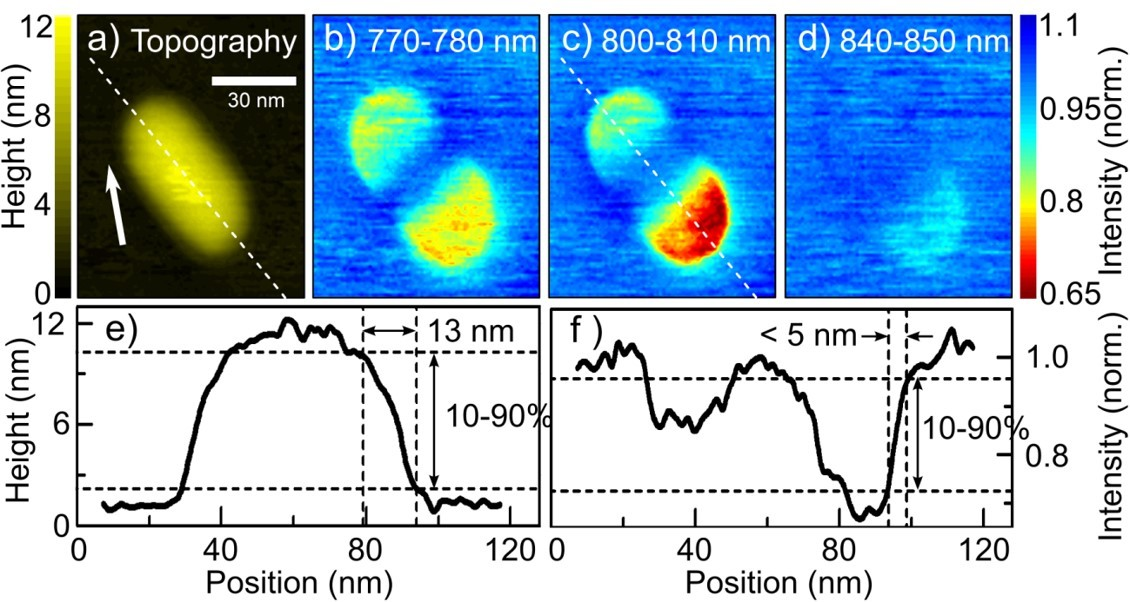 Plasmonic nanofocusing spectroscopy of a single gold nanorod